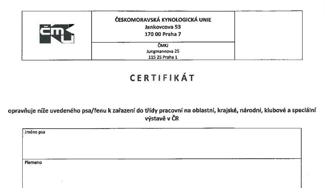 Certifikát zařazení do pracovní