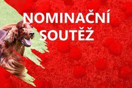 Nominační soutěž